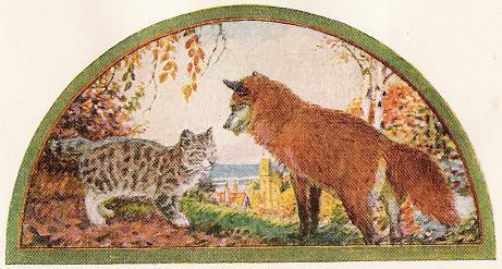 20140704-cat fox best